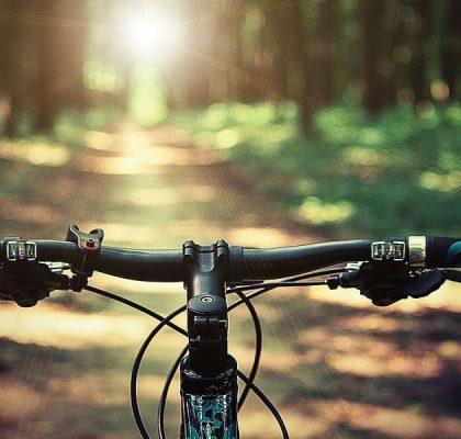 Bosque de Irati en bicicleta
