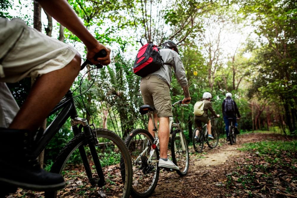 Excursión por el bosque de Irati