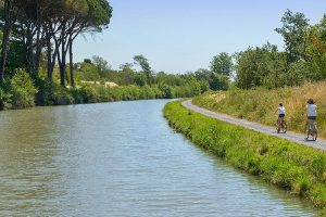 Ruta río Elba